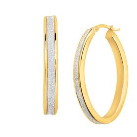Glitter Oval Hoop Earrings