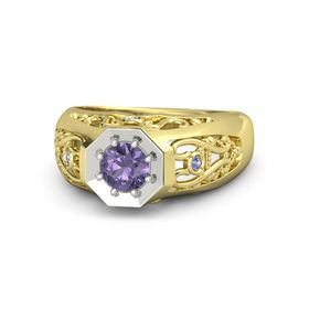 Round Iolite 14K Yellow Gold Ring with Iolite