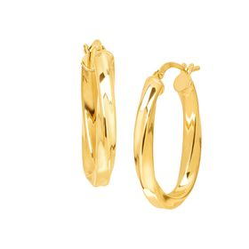 Twisted Oval Hoop Earrings