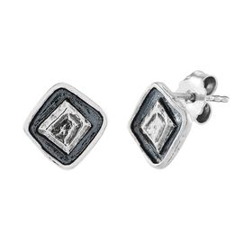 Double Glance Earrings