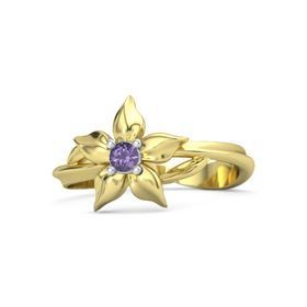 14K Yellow Gold Ring with Iolite