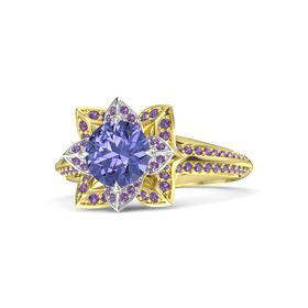 Round Tanzanite 14K Yellow Gold Ring with Amethyst