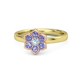 Round Aquamarine 14K Yellow Gold Ring with Iolite