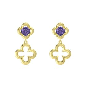 Round Iolite 14K Yellow Gold Earring