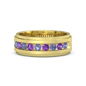 Men's 14K Yellow Gold Ring with Tanzanite & Amethyst