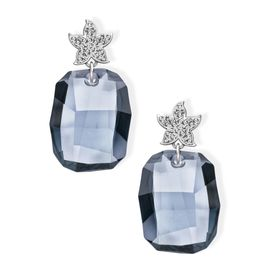 Storm Swarovski Crystals Earrings